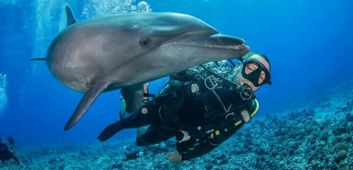 https://tahititourisme.ch/wp-content/uploads/2017/08/Archimedeexpeditionsphotocouverturure_1140x550px.png