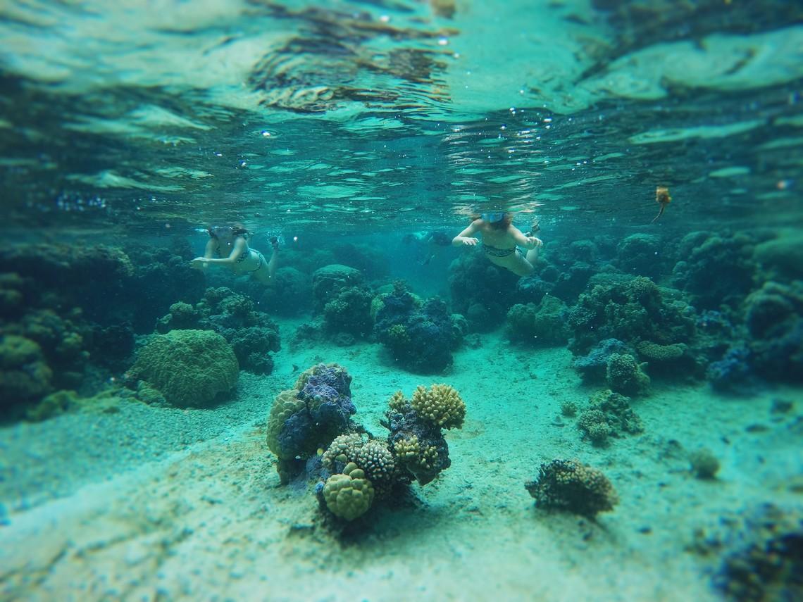 https://tahititourisme.ch/wp-content/uploads/2017/08/Bora-Bora-Reef-Discovery-2.jpg
