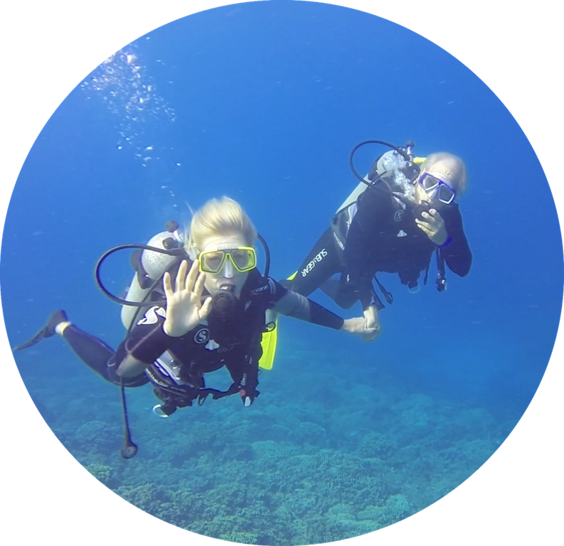 https://tahititourisme.ch/wp-content/uploads/2017/08/Divers-in-the-first-try.png