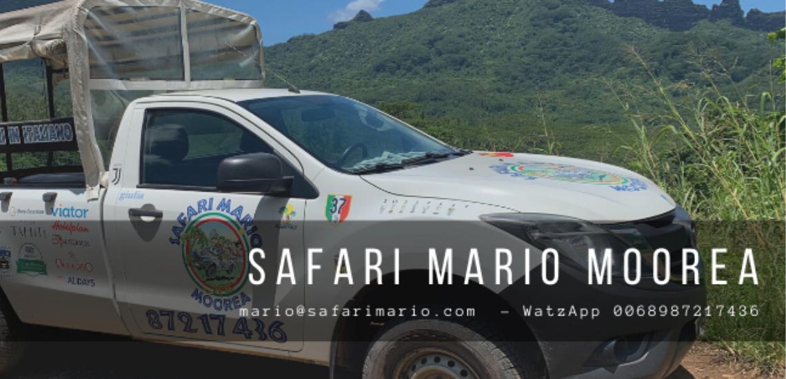 https://tahititourisme.ch/wp-content/uploads/2017/08/Safari-Mario-Moorea.png