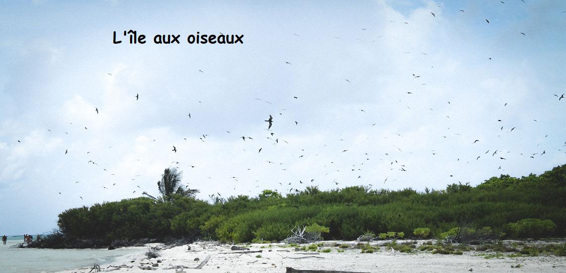https://tahititourisme.ch/wp-content/uploads/2017/08/Tahiti-Voile-et-Lagon-photo-de-couv-2.jpg