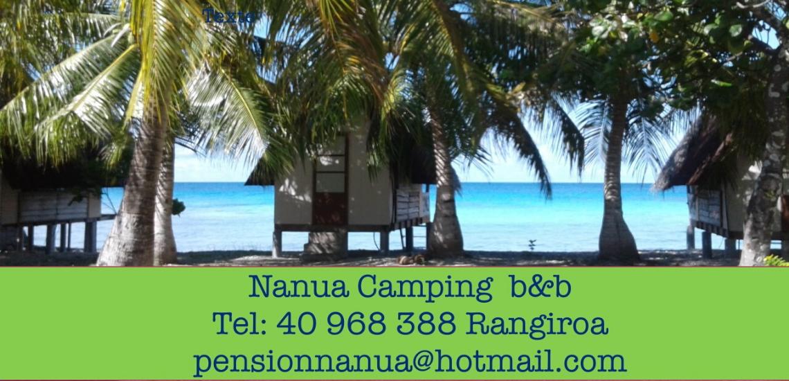 https://tahititourisme.ch/wp-content/uploads/2017/08/nanuacamping_1140x550.png