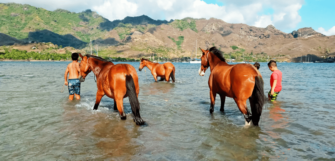 https://tahititourisme.ch/wp-content/uploads/2017/08/nukuhivaacheval_1140x550-min.png