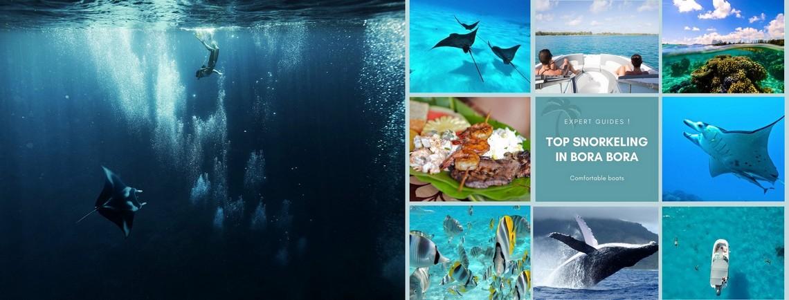 https://tahititourisme.ch/wp-content/uploads/2017/08/reef-discovery-bora-bora.jpg