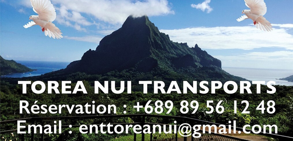 https://tahititourisme.ch/wp-content/uploads/2017/08/torea-nui-transports_1140x550.png