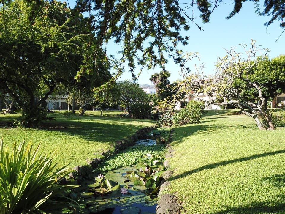 https://tahititourisme.ch/wp-content/uploads/2017/09/jardin-vue-1.jpg