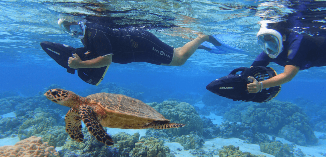 https://tahititourisme.ch/wp-content/uploads/2018/02/mooreawatergames_1140x5502-min.png