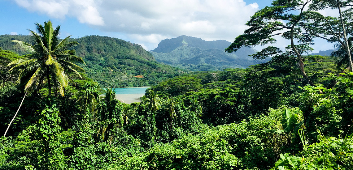 https://tahititourisme.ch/wp-content/uploads/2018/05/ACTIVITES-TERRESTRES-Green-Tours-Huahine-2.jpg