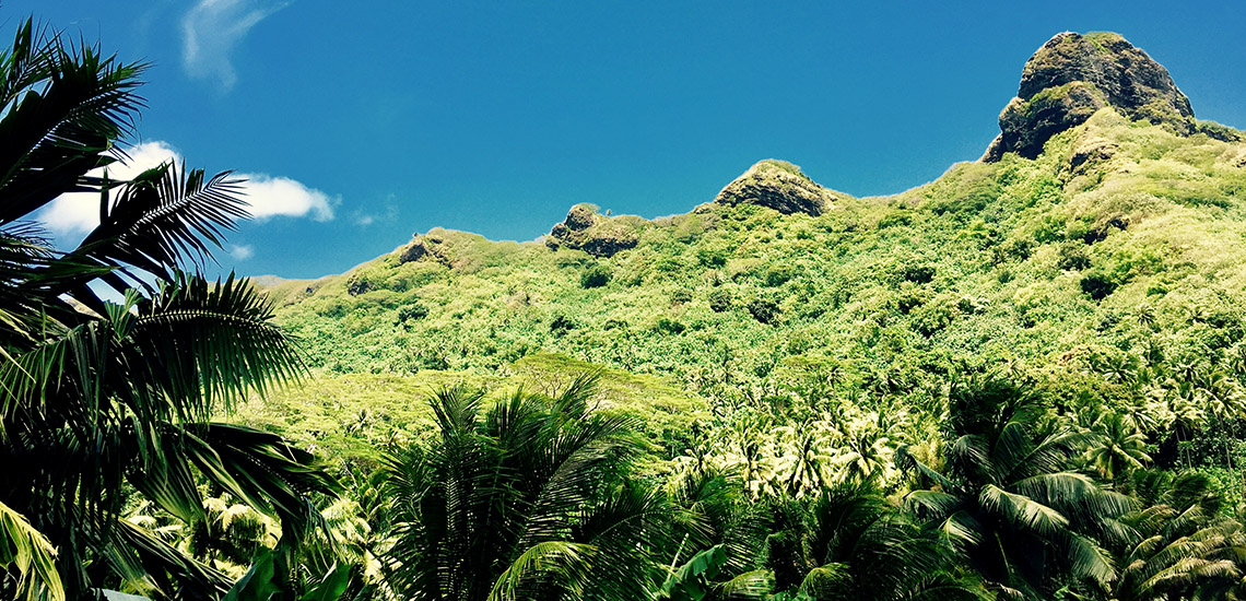 https://tahititourisme.ch/wp-content/uploads/2018/05/ACTIVITES-TERRESTRES-Green-Tours-Huahine-3.jpg