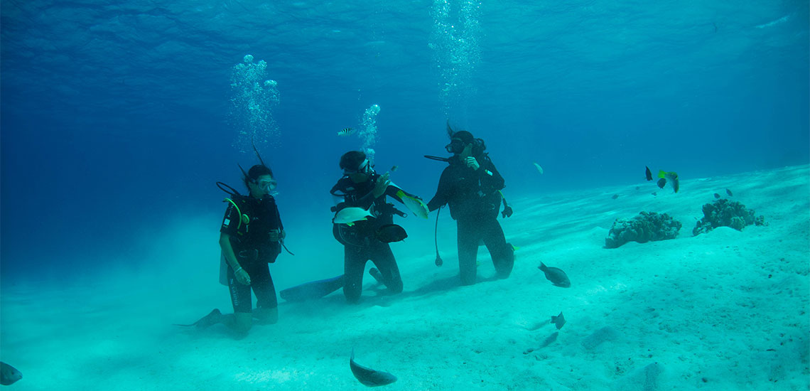 https://tahititourisme.ch/wp-content/uploads/2019/04/Tahiti-Nui-Diving-1140x550.jpg