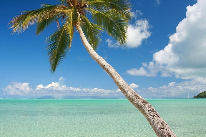 https://tahititourisme.ch/wp-content/uploads/2019/05/2012_HUH_H_Relais-Mahana-Beach-4-small.jpg