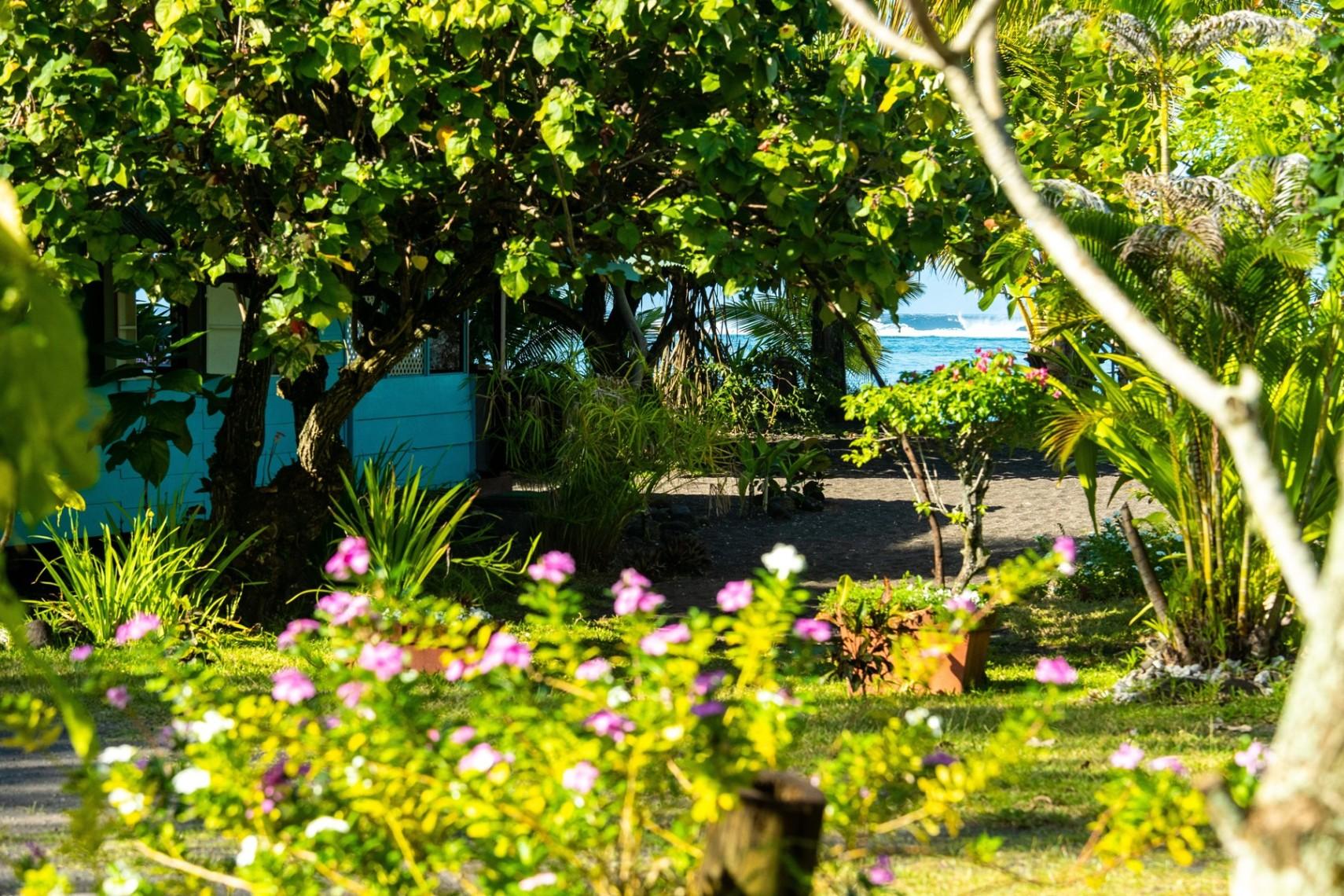 https://tahititourisme.ch/wp-content/uploads/2019/08/copie-tahiti-tourisme-800ko-1.jpg