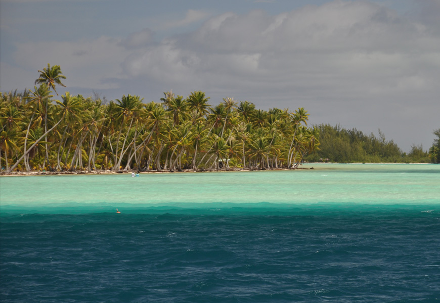 https://tahititourisme.ch/wp-content/uploads/2020/06/PPT_palmiers_mer_mobile.jpg