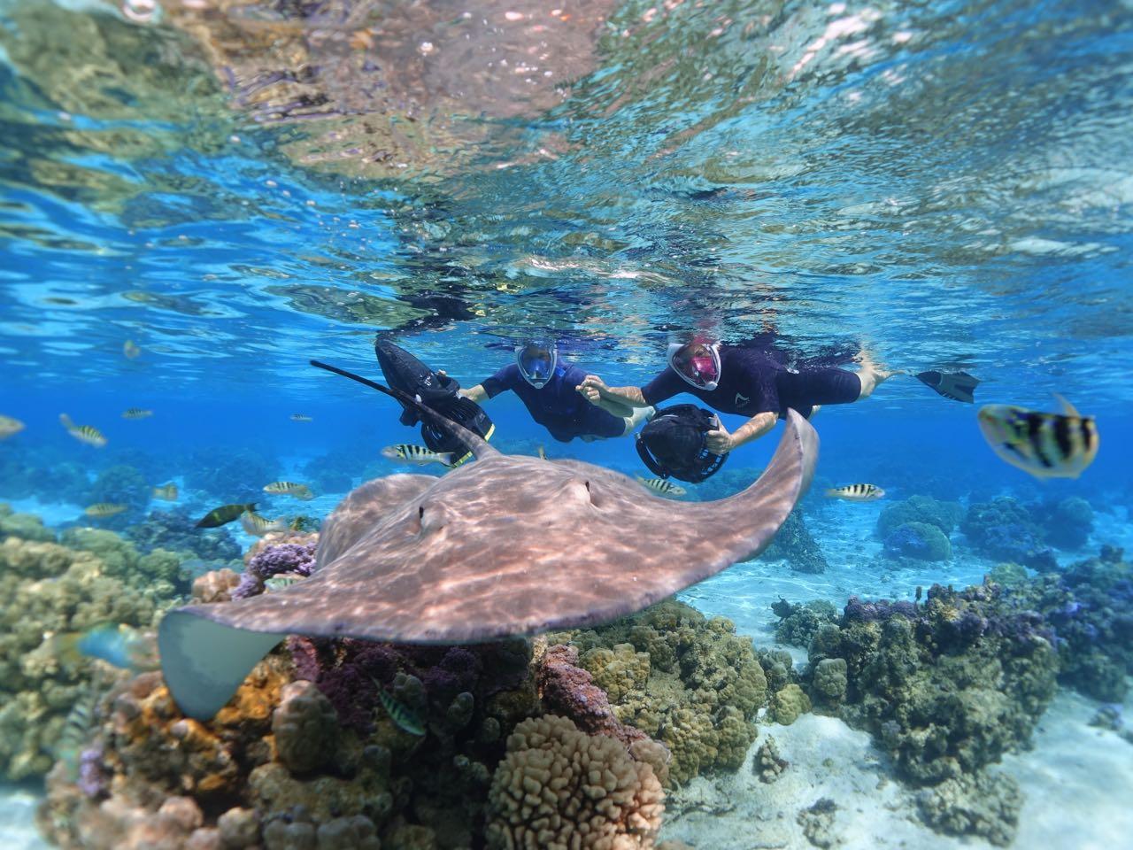 https://tahititourisme.ch/wp-content/uploads/2020/09/Sea-Scooter-Snorkeling-Tour-à-moorea-copie-2.jpg