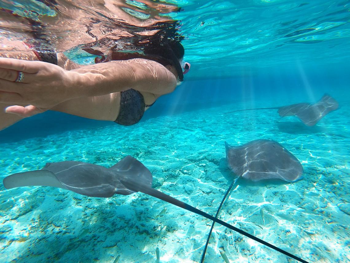 https://tahititourisme.ch/wp-content/uploads/2020/11/Lagoon-Srvice-Bora-Bora-2.jpg