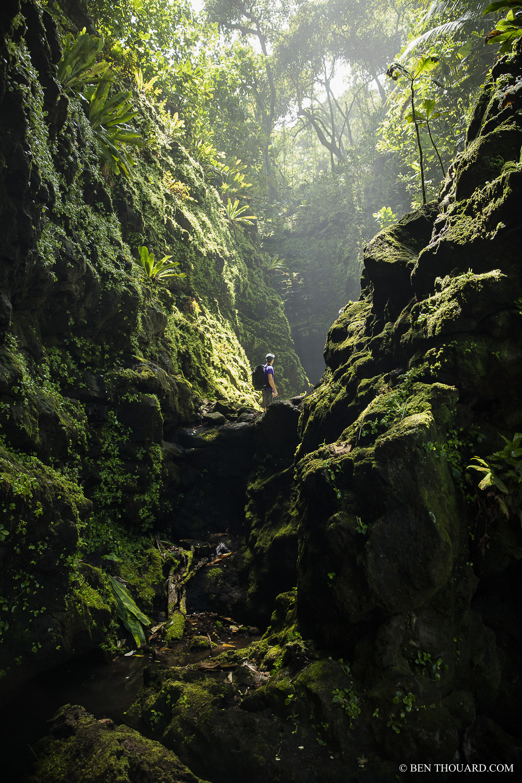 https://tahititourisme.ch/wp-content/uploads/2021/04/benthouard_tepari_hike_0242.jpg