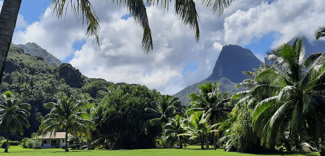 https://tahititourisme.ch/wp-content/uploads/2021/05/residenceapaura_1140x550-1-min.png